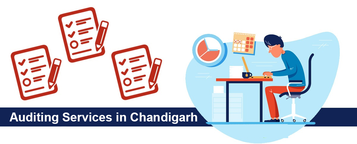 auditing service in chandigarh